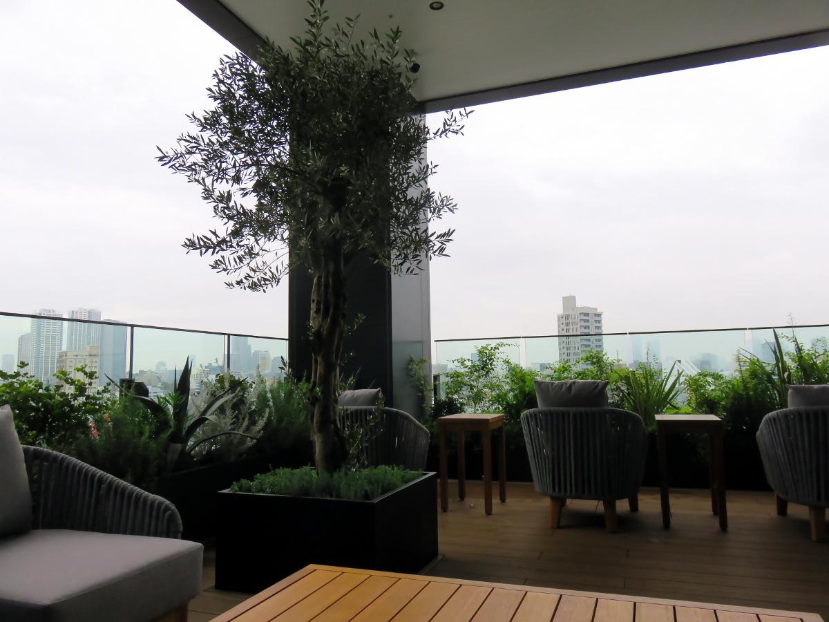 [EN] Terrace. [FR] terrasse. [JP] テラス。